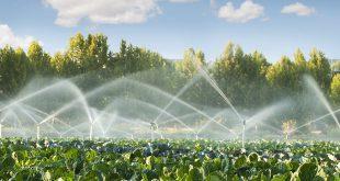 قیمت انواع آبپاش پلیمری آبیاری بارانی