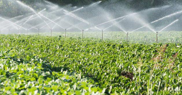 خرید آنلاین وسایل آبیاری بارانی